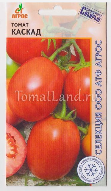 помидоры каскад отзывы фото