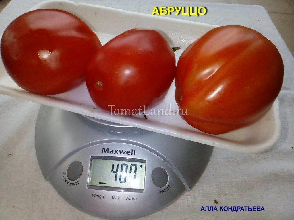 помидоры Абруццо отзывы фото