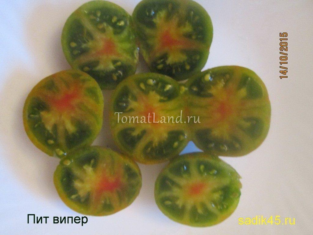 томат пит випер фото в разрезе