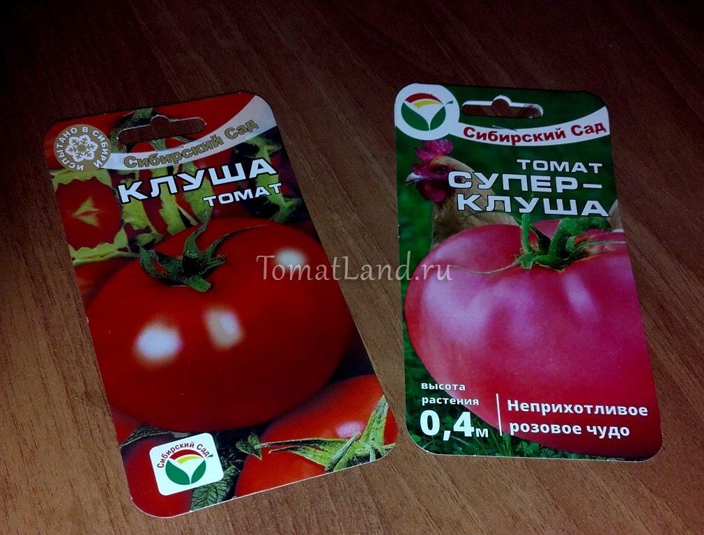 помидоры супер клуша розового цвета, фото