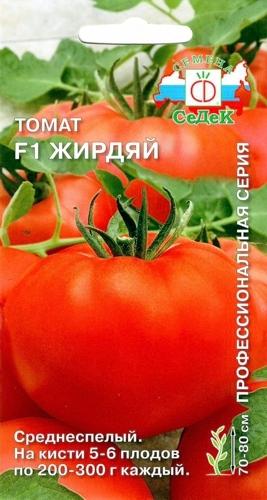томат жирдяй отзывы фото