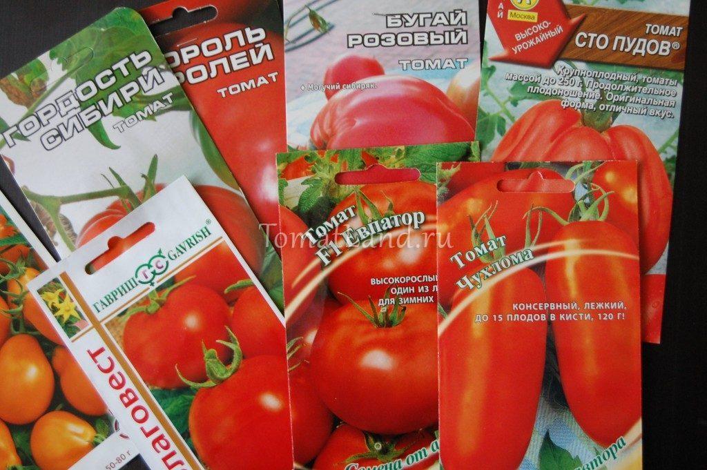 семена томатов купить