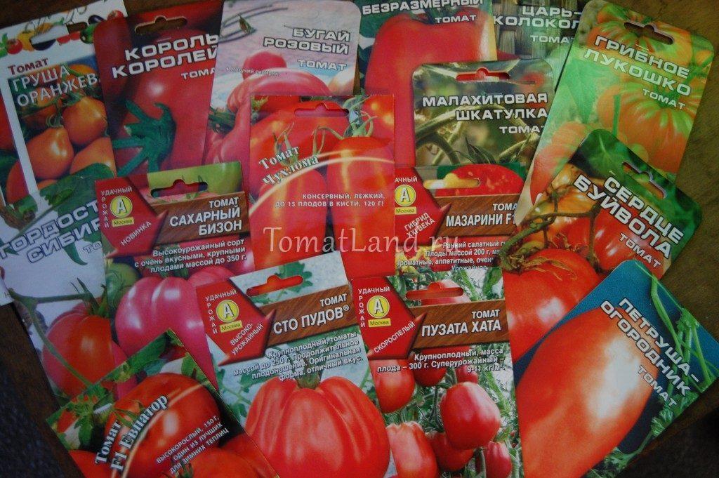 семена помидоров от производителя