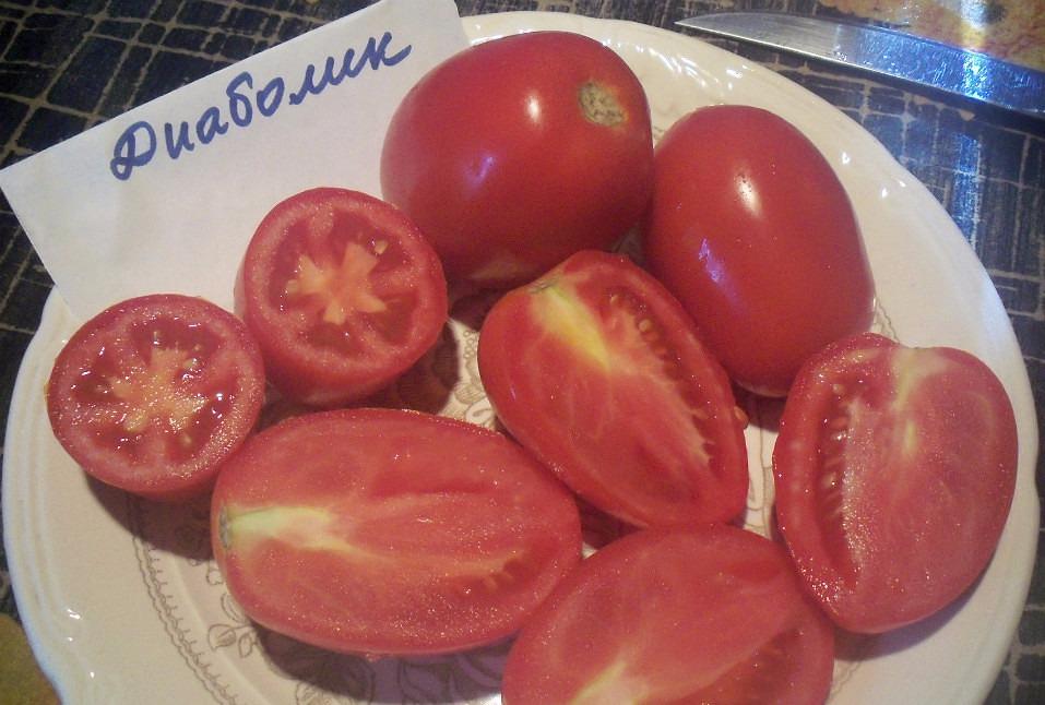 помидоры диаболик фото