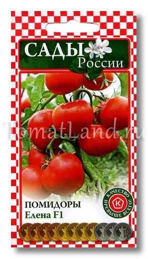 томаты елена отзывы фото