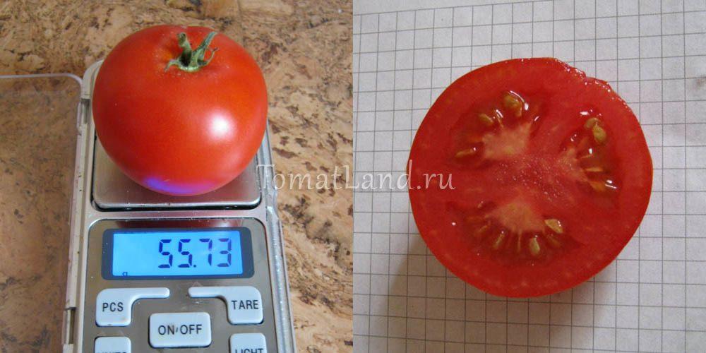 томаты сорт Турбореактивный фото отзывы