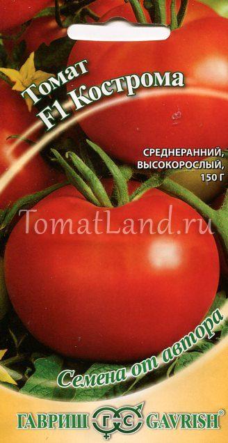 томатs кострома фото