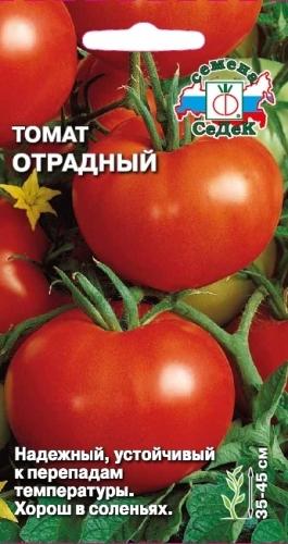 помидоры сорт отрадный фото отзывы