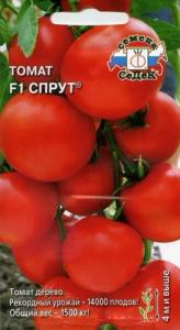 помидоры спрут