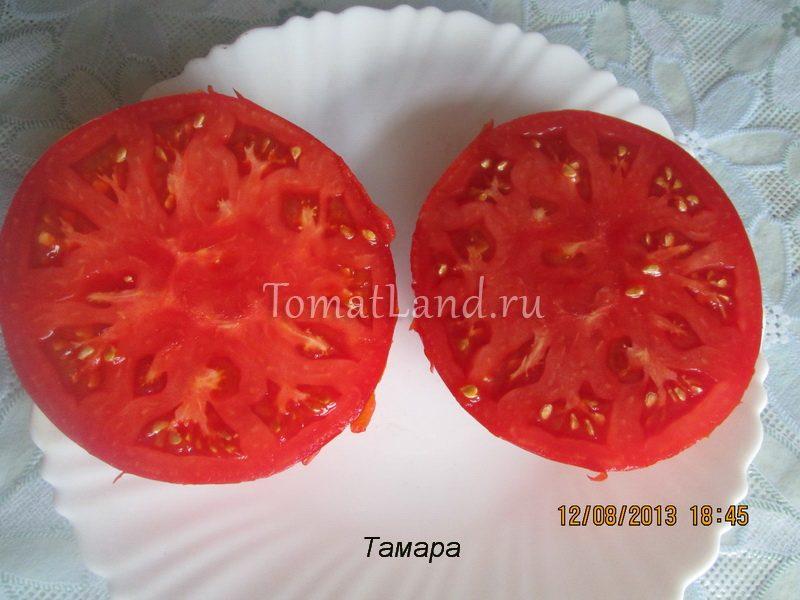 помидоры тамара в разрезе
