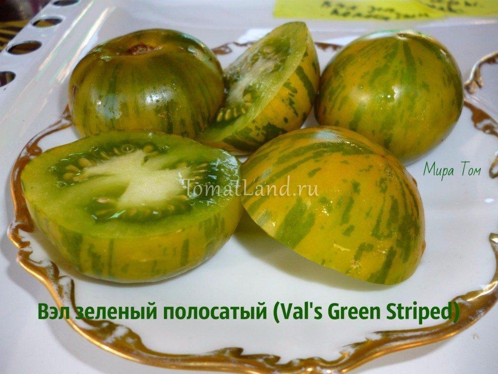 помидоры вэл зеленый