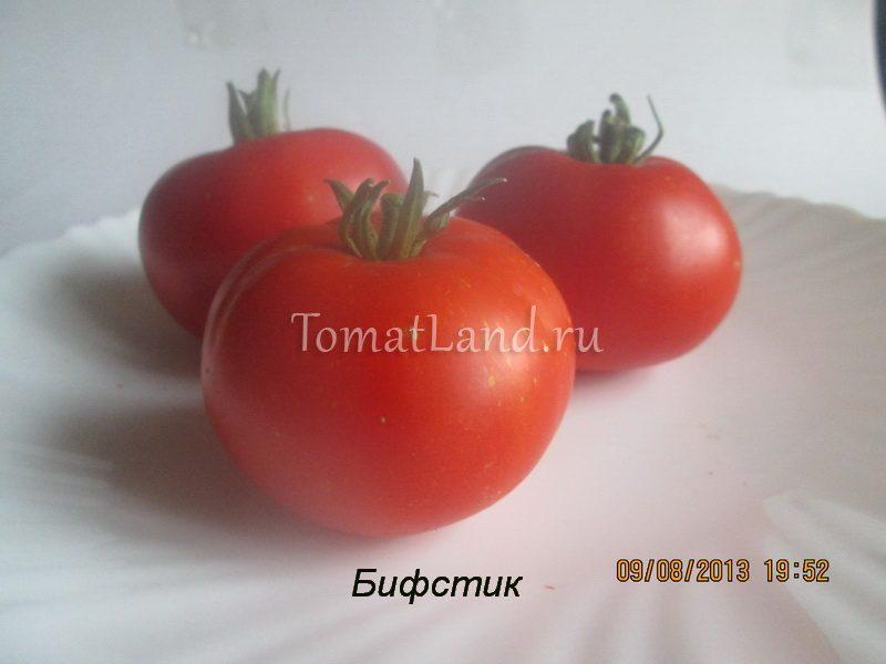 помидоры буш бифстик фото спелых плодов