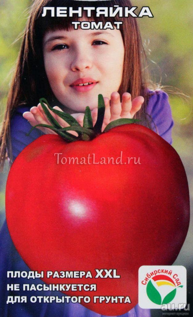 томатs лентяйка отзывы