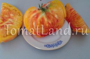 помидоры грейпфрут описание