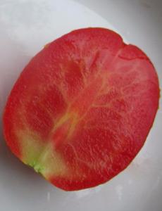 помидоры сибирская жемчужина