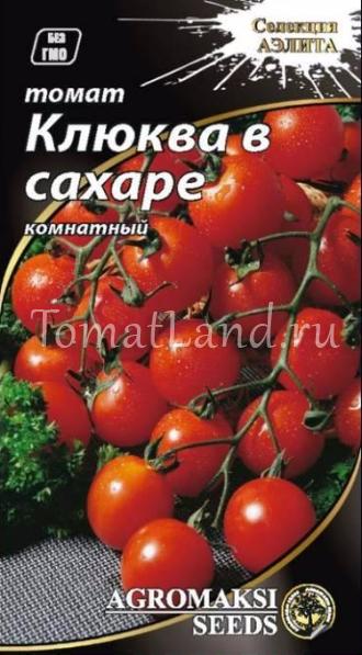 помидоры клюква в сахаре фото характеристика