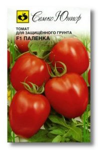 томат паленка