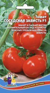 томат соседская зависть