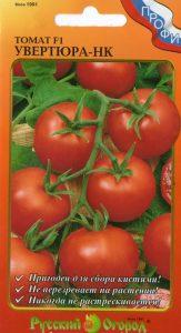 томаты увертюра