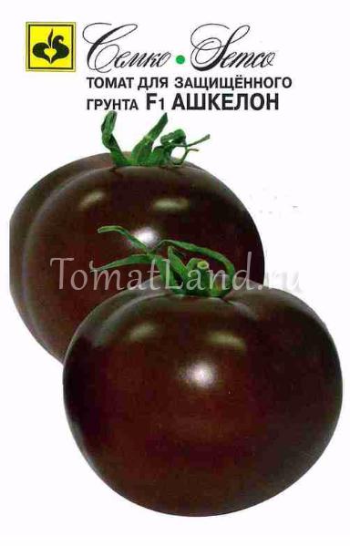 томат ашкелон описание