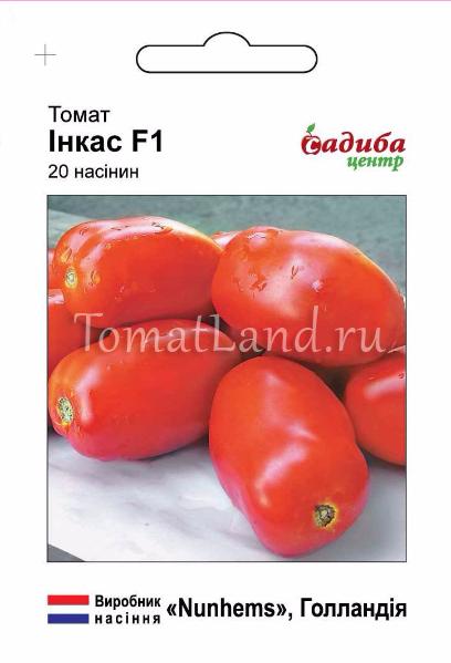 томаты инкас описание отзывы фото