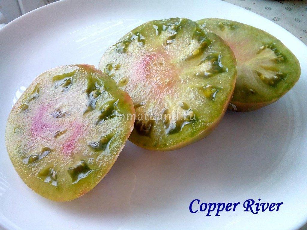 помидоры медная река фото отзывы характеристика