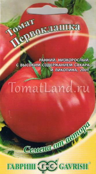 томаты первоклашка фото