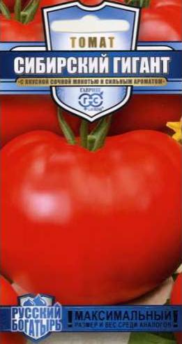 томаты сибирский гигант фото