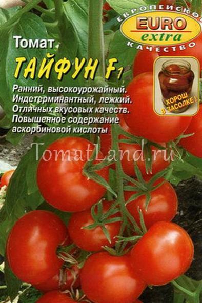 томат тайфун отзывы