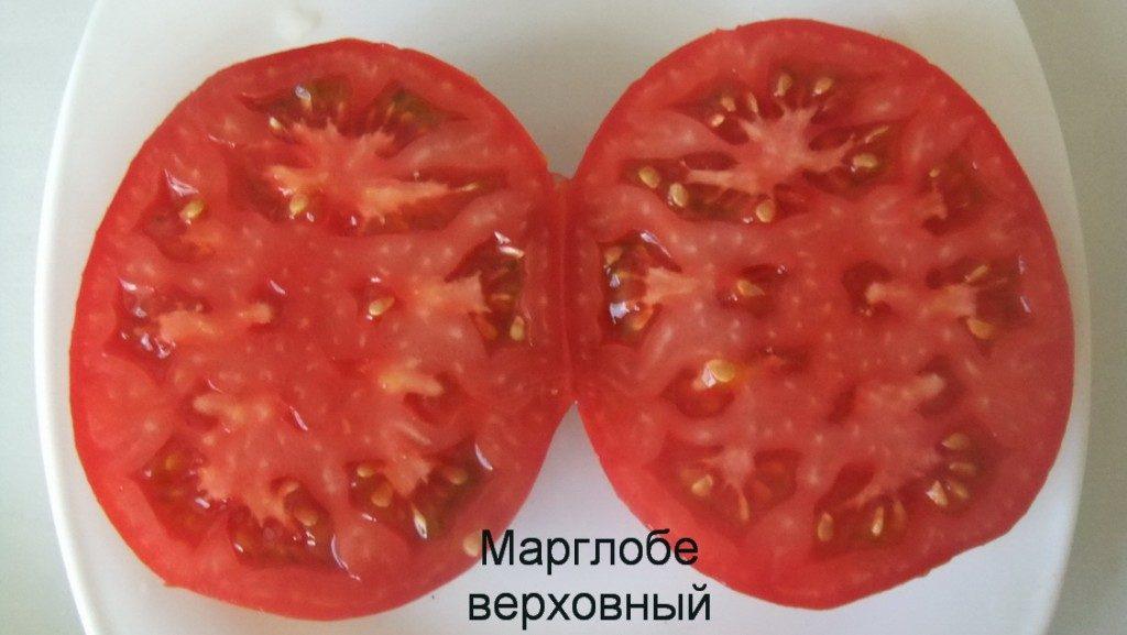 томат марглоб фото спелых плодов