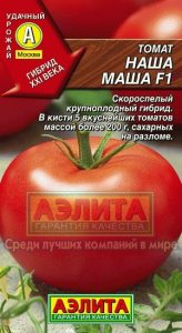 томат наша маша фото