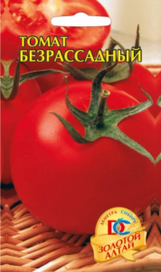 томат безрассадный фото