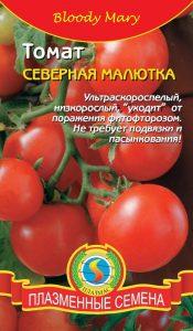 томаты северная малютка