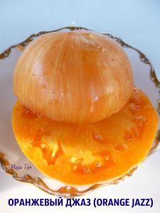 оранжевый джаз фото томата