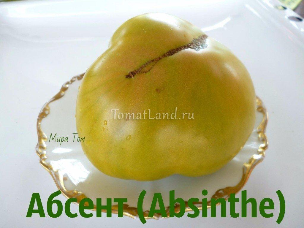 помидоры Абсент фото спелых плодов
