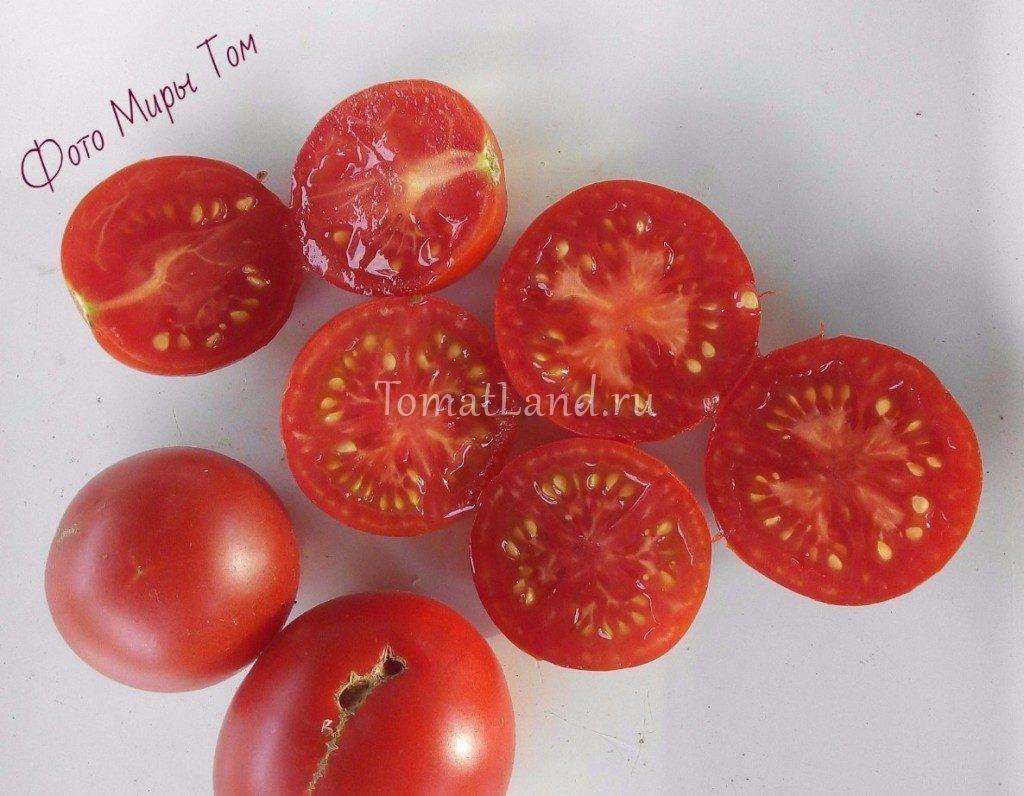 помидоры моравское чудо фото спелых плодов