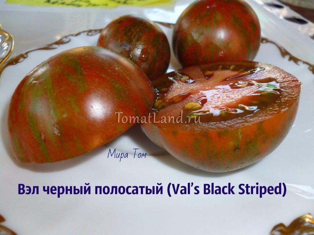 томат вэл черный фото в разрезе