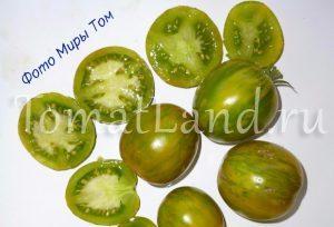 помидоры Грин зебра фото