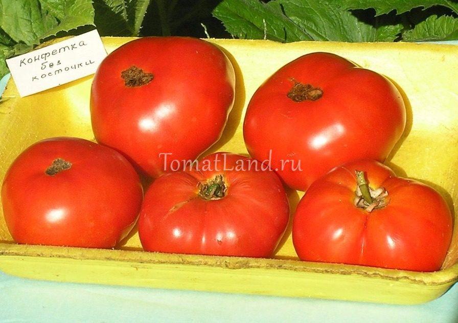 помидоры конфетка без косточки фото