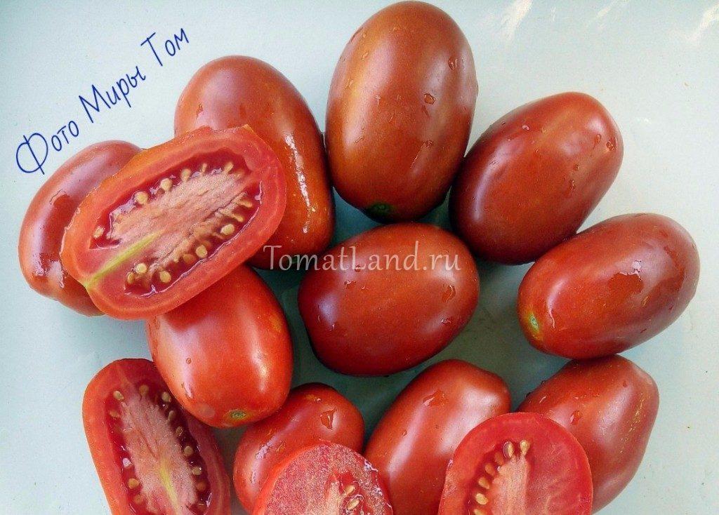 помидоры ло чан и ха фото