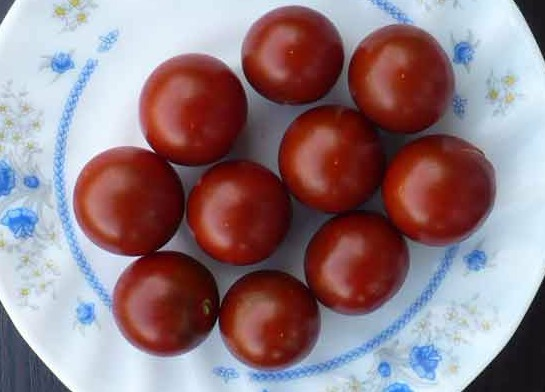 помидоры Черный Мэтта фото