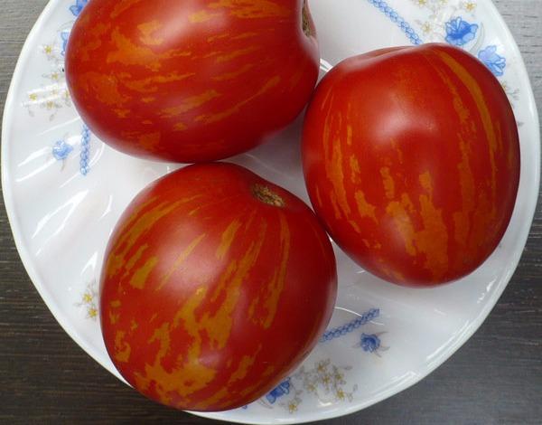 помидоры русская королева
