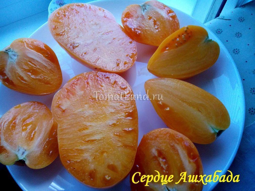 помидор сердце ашхабада фото отзывы