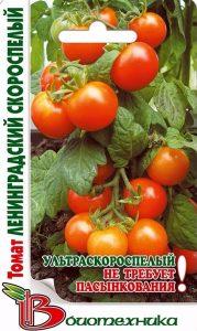 помидоры ленинградский скороспелый фото