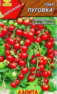 помидоры пуговка фото