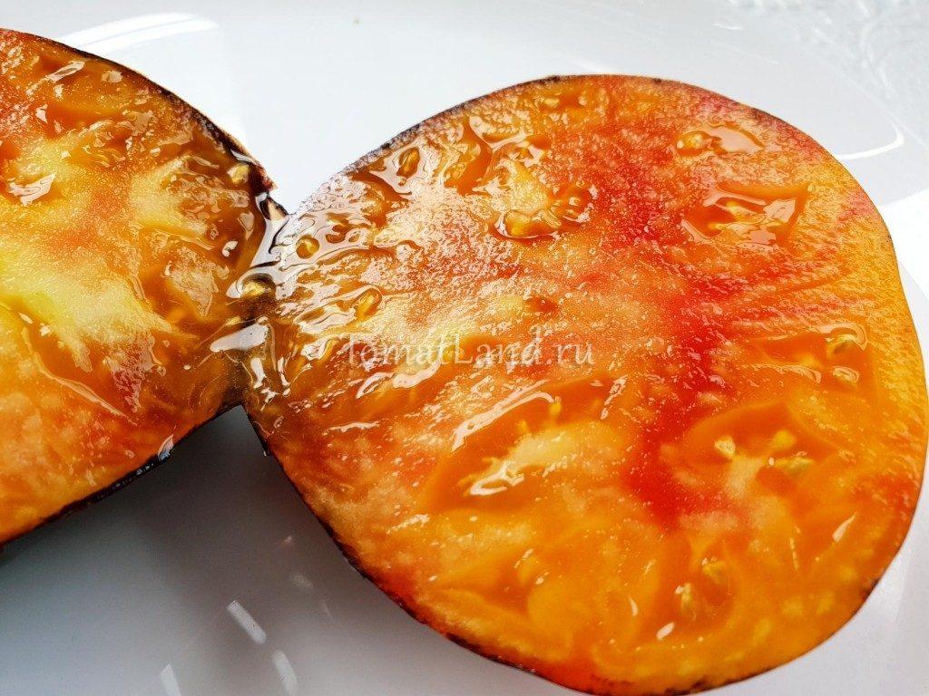 томаты сорт мечта алисы характеристика фото