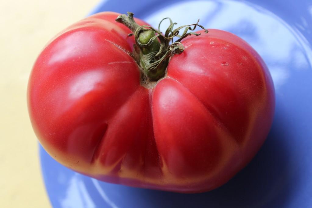томаты сорта Доктор Лайл