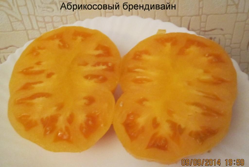 помидоры абрикосовый брендивайн фото в разрезе