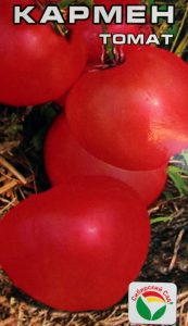 томаты Кармен фото