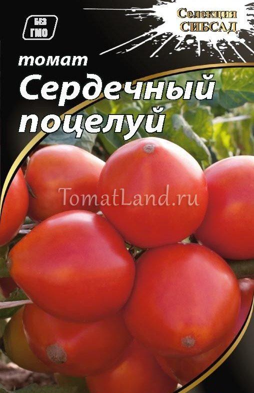 помидоры сердечный поцелуй фото